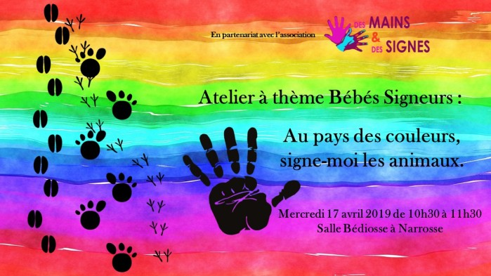 animaux couleurs